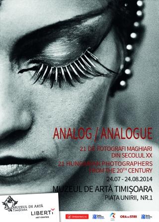 expo_analogue_poster_timisoara_bilingv.jpg