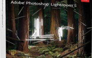 Adobe_P_L5.jpg